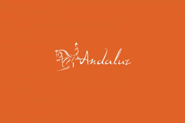 andaluz_by_11thagenyc-d64qtqo-600x400